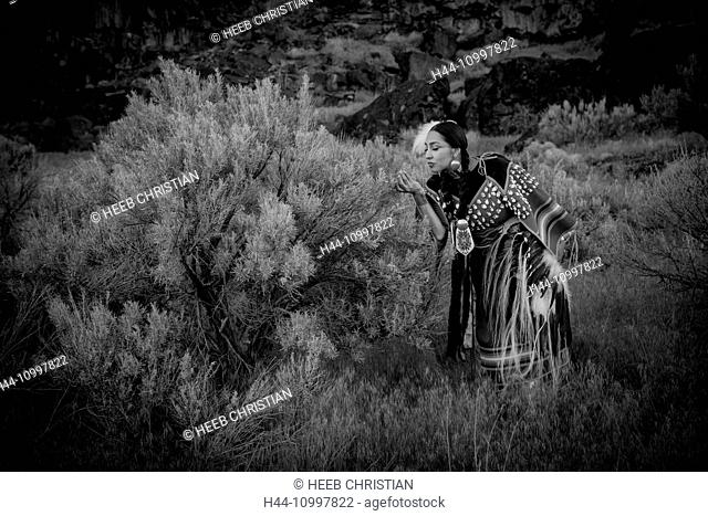 USA, Idaho, Willow Abrahamson, MR 0562. Shoshone Beauty along Snake River Canyon