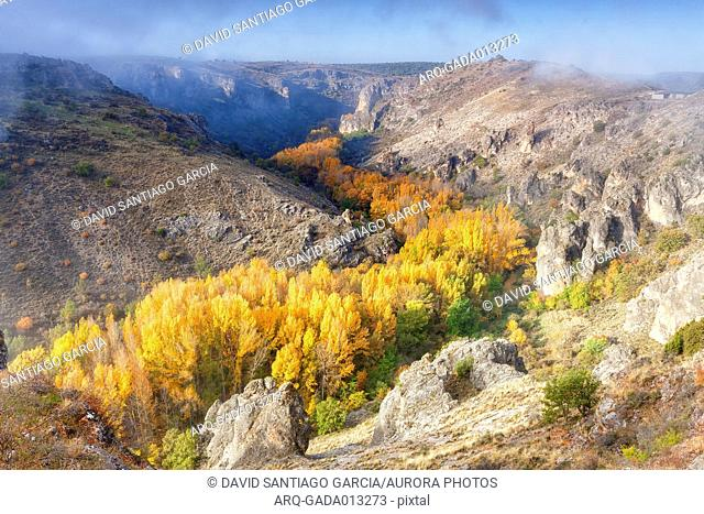 The Canyon Of The Dulce River Natural Park In Autumn