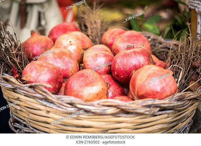 Rome, Italy- A basket of pomegranates for sale in Campo de' Fiori, the largest and oldest outdoor market in Rome. It is located south of Piazza Navona
