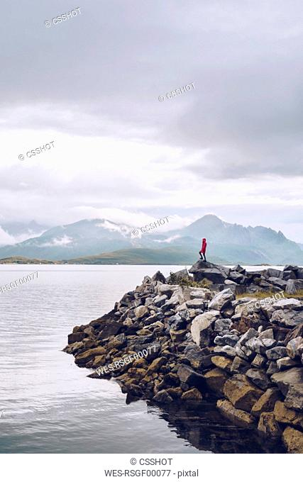 Norway, Senja, man standing on rock at the coast