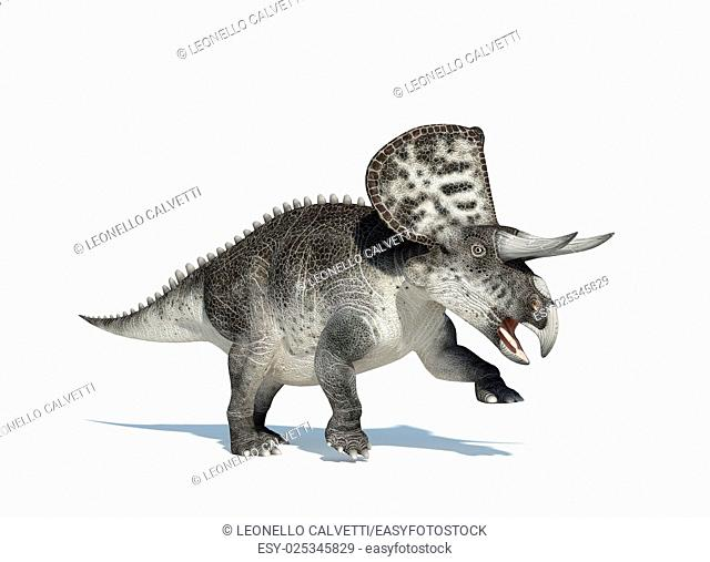 Zuniceratops on white background. With clipping path included