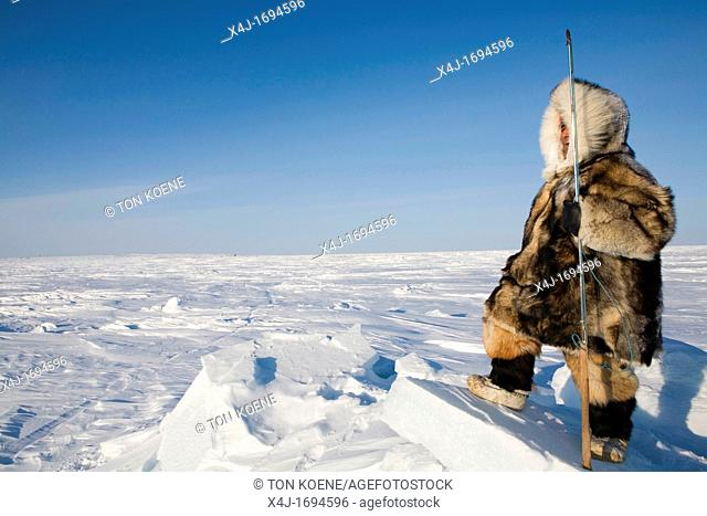 Gojahaven is a town in the far north of canada in 1000 where Inuits living Traditionally, Inuits hunt all kind of animals meant for their daily food consumption...