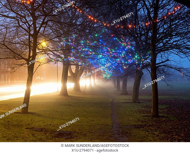 Fairy Lights in Trees by The Stray at Dusk on a Misty Evening Harrogate North Yorkshire England