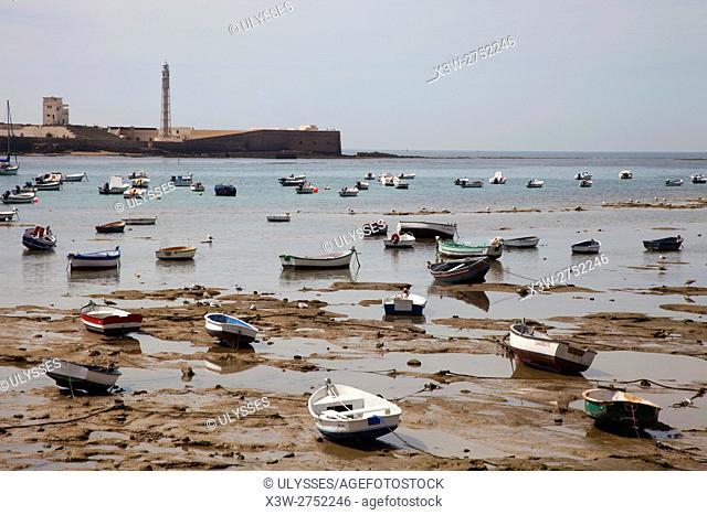 Beach, Cadiz, Andalucia, Spain, Europe