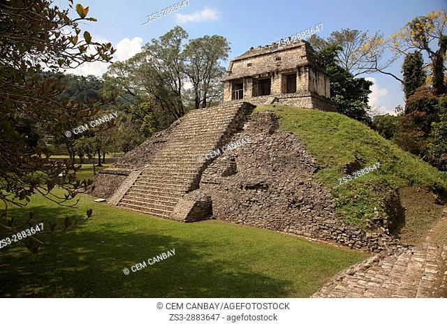 Temple Del Conde, Palenque Archaeological Site, Palenque, Chiapas State, Mexico, Central America