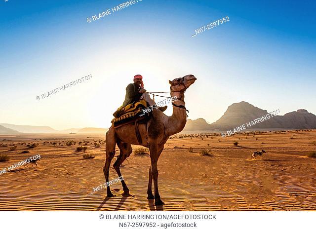 Bedouin man riding a camel in the Arabian Desert, Wadi Rum, Jordan