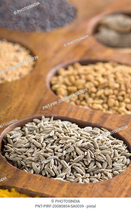 Close-up of cumin seeds in a spice container