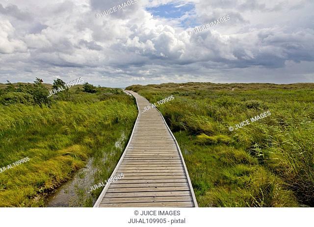 Wooden footbridge to beach, Bornholm Island, Denmark