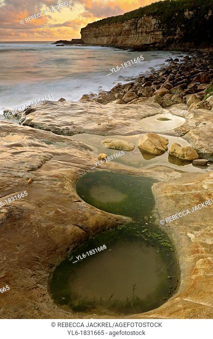 Tide pool along the California coastline