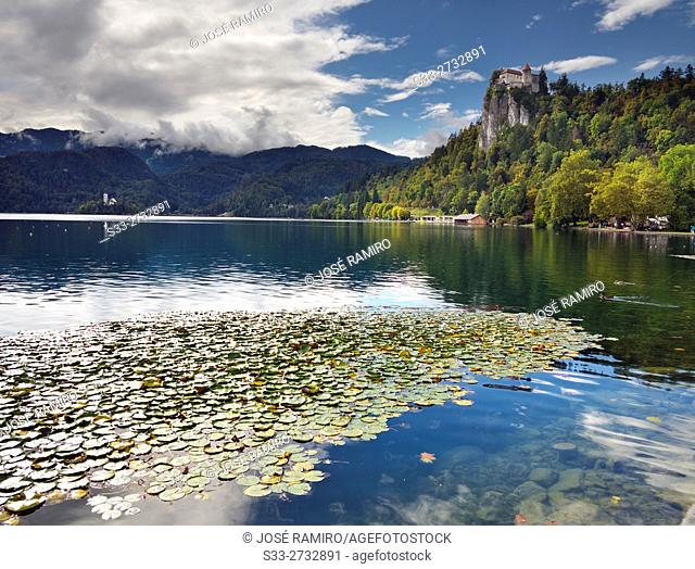 Bled lake in Slovenia. Europe