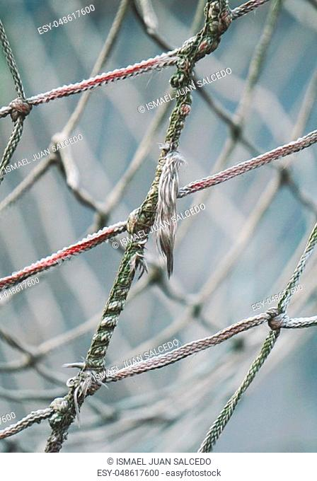 rope net texture background
