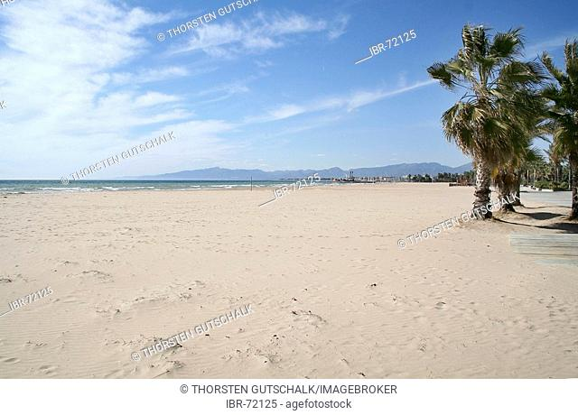 Palm trees at deserted lonely beach in the early season El Vendrell, Coma Ruga Costa Dorada Spain