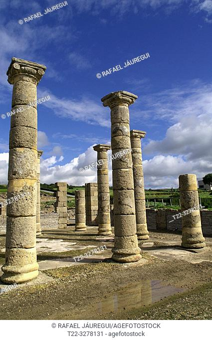Rate (Spain). Columns of the forum of the Roman city of Baelo Claudia