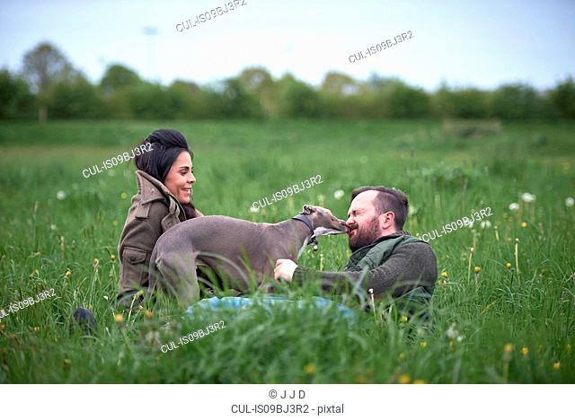 Man and woman reclining in field playing with dog