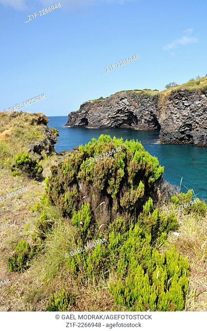 Rocky volcanic coast of Faial, Azores, Portugal