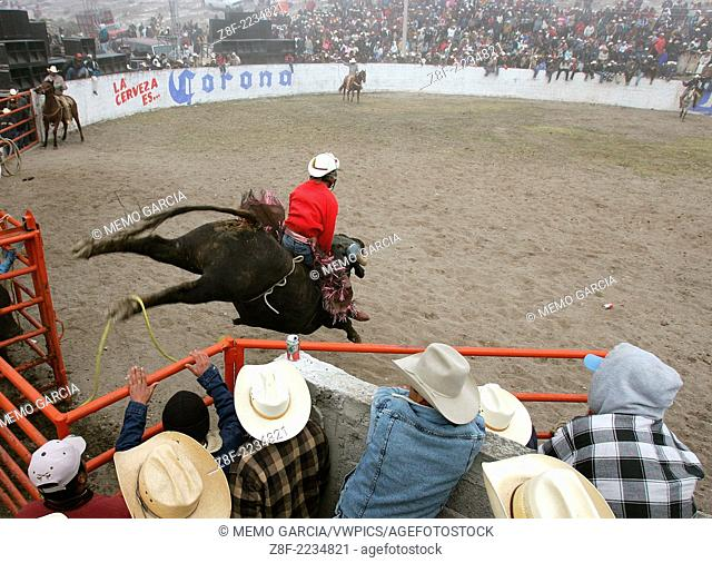 Mexican Rodeo Jaripeo, biggest bulls and best riders get together in this rural gathering