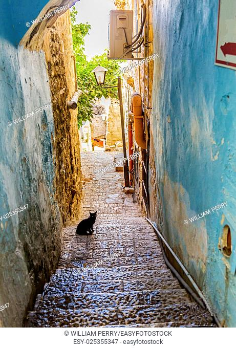 Old Stone Street Alleyway Black Cat Safed Tsefat Israel Many famouse synagogues located in Safed