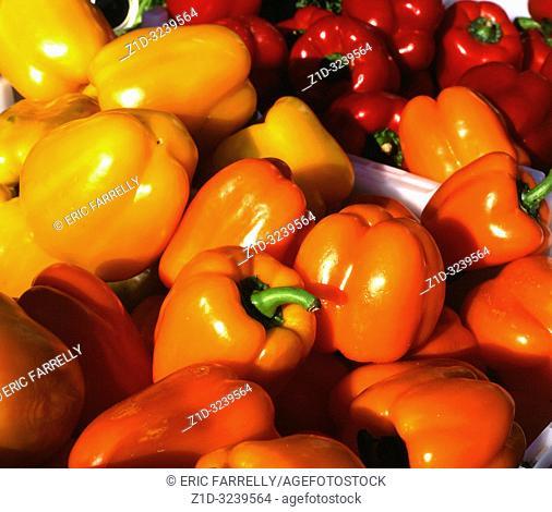 market stall selling peppers. Salisbury market place England UK