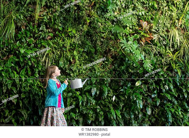 A young girl standing in front of a wall covered with ferns and climbing plants