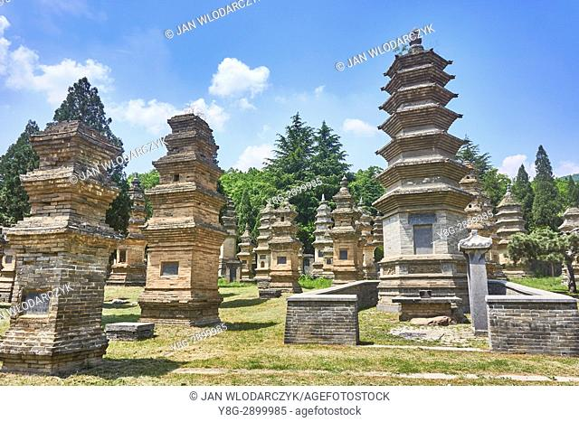 Pagoda Forest Cemetery, Shaolin Temple, Henan Province, China