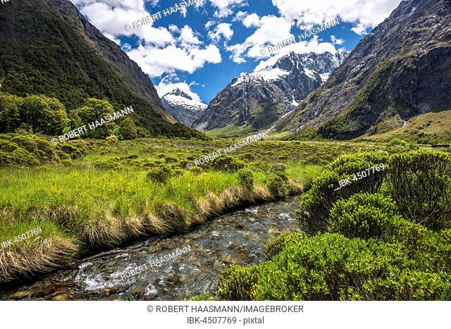 Creek in the Fiordland National Park, at back Mount Talbot, Milford Road, Southland, New Zealand