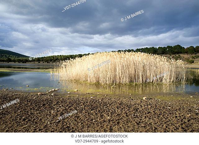 Laguna de Bezas, Sierra de Albarracin, Teruel province, Aragon, Spain