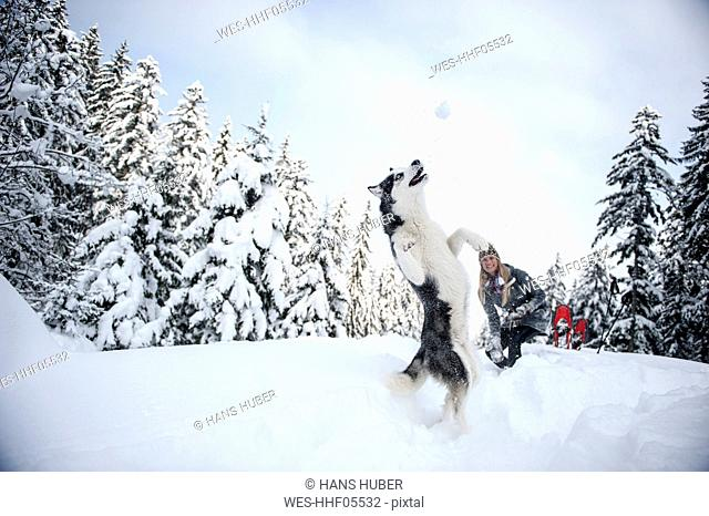 Austria, Altenmarkt-Zauchensee, young woman with dog in winter forest
