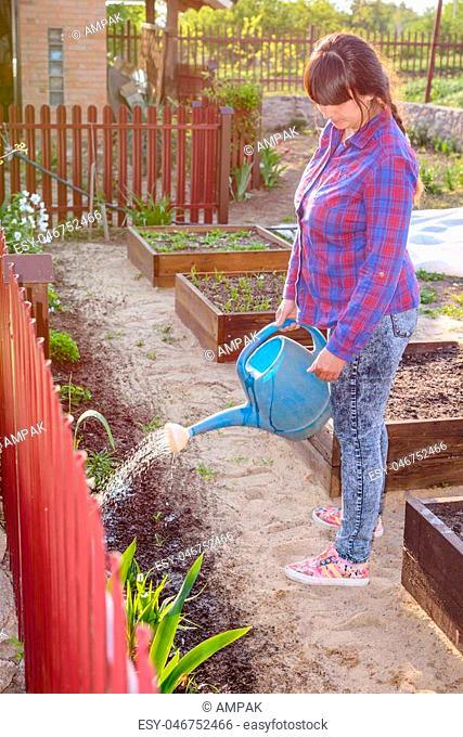 Attractive woman watering a flowerbed bordering a vegetable garden using a watering can, profile full length view