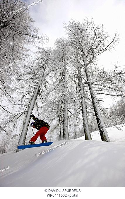 A snowboarder flying through a snowy forest