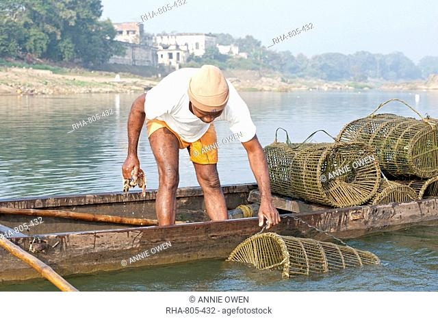 Fisherman in wooden boat, checking his fishing pots made from coir and bamboo, River Mahanadi, Orissa, India, Asia