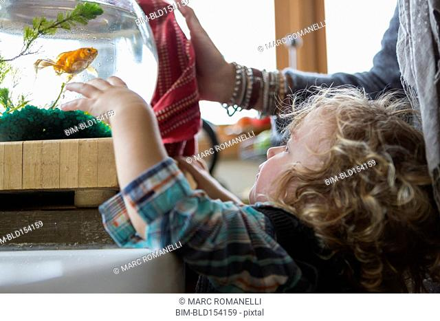 Caucasian mother and baby boy examining fishbowl