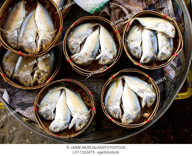 Fish in round bamboo holders for sale Thailand