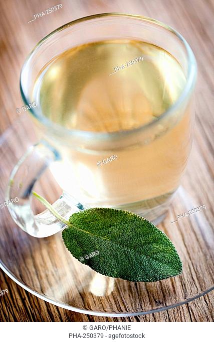 Sage herbel tea