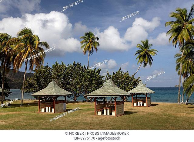 Barbecue huts on the beach, coconut trees, Speyside, Tobago, Trinidad and Tobago