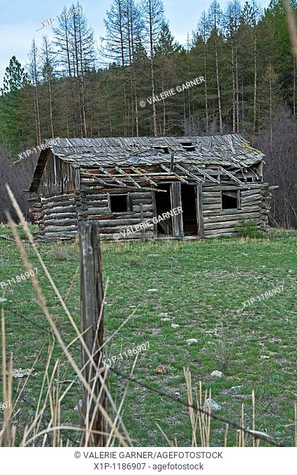 This old turn of the century abandoned homestead cabin in located in the hills near Republic Washington in a green field with mountains in the background and a...