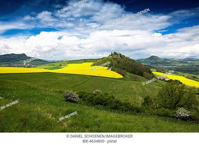 Blooming rape fields and Hegau volcano Mägdeberg with castle ruin, Weiterdingen, Hegau, Baden-Württemberg, Germany