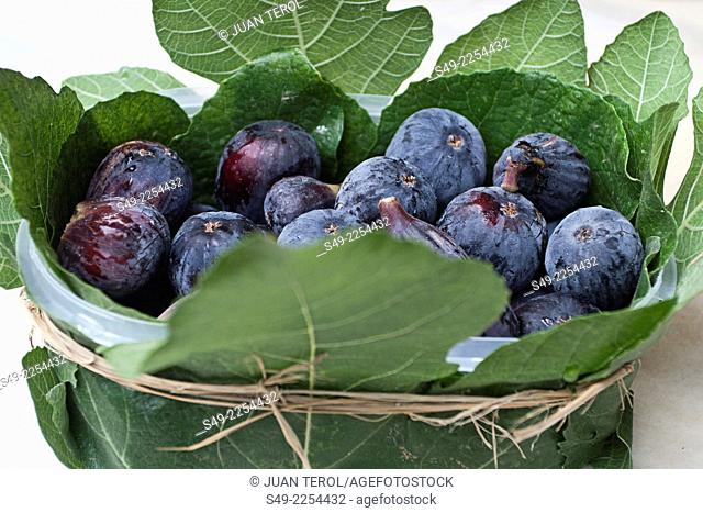 Figs with fig leaves