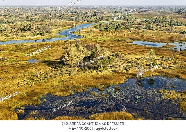 The Gomoti River with its adjoining freshwater marshland aerial view - Okavango Delta, Moremi Game Reserve, Botswana