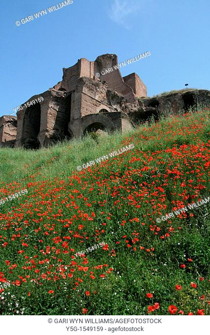 the ancient roman palatine hill monument in rome