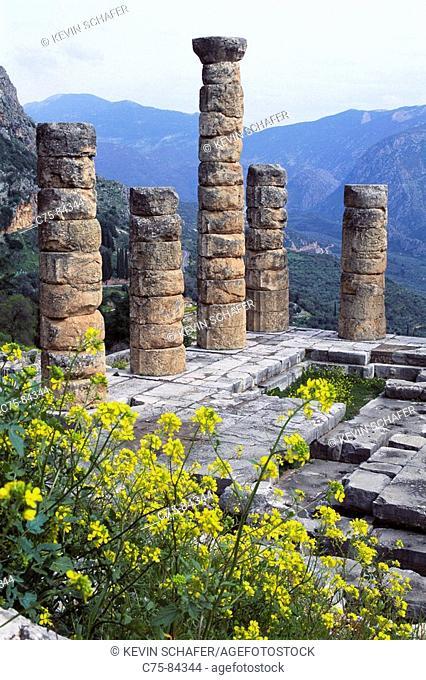 Sanctuary of Apollo (4th century B.C.), Mount Parnassus, Delphi. Greece