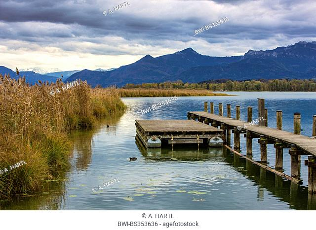 autumn at the Chiemsee in front of Alps scenery, Germany, Bavaria, Lake Chiemsee