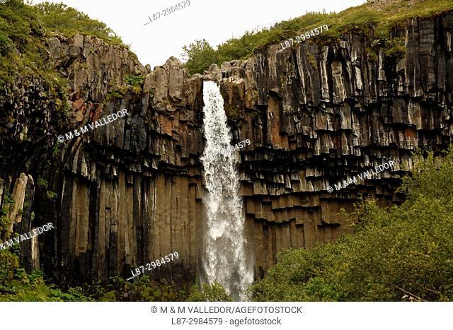 Svartifoss waterfall, Skaftafell park, Iceland