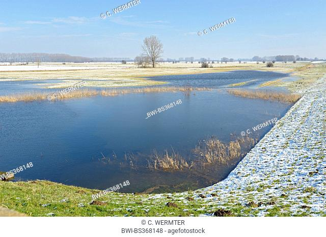 flooded snowy field landscape of Lower Rhine region, Germany, North Rhine-Westphalia, Lower Rhine, Schenkenschanz