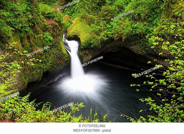 USA, Oregon, Hood River County, Columbia River Gorge, Punch Bowl Falls