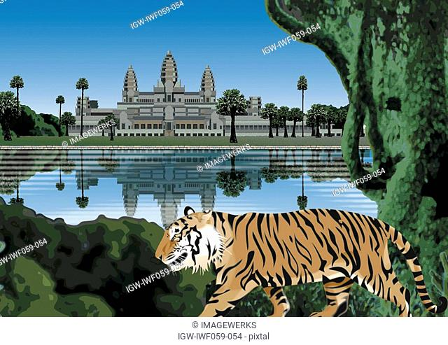 Reflection of building on lake with tiger in foreground