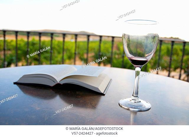 Empty glass of red wine and open book