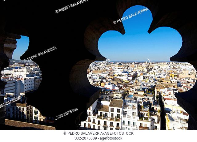 Aerial view of Old Seville from the Giralda Tower, Andalucia, Spain