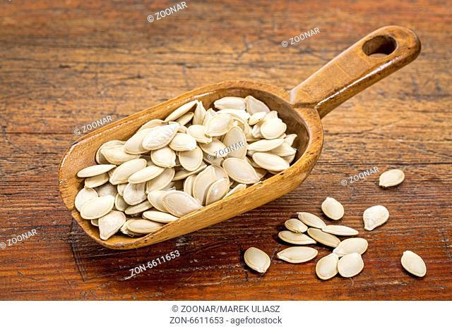 scoop of fresh pumpkin seeds