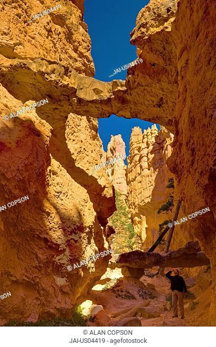 USA, Utah, Bryce Canyon National Park, Navajo Loop Trail
