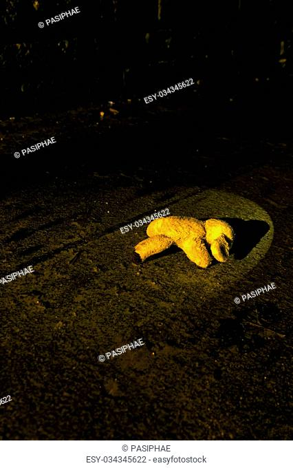 teddy bear in torch light, laying on the rainy ground